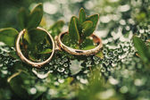 Wedding-ring on green — Stock Photo