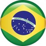 Brezilya bayrağı — Stock Vector #49012623