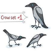Hooded Crow Set — Stockvektor