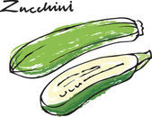 Fresh zucchini courgette whole & sliced — Stock Vector