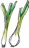 Fresh spring onions — Stock Vector