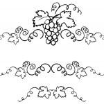 Grapes & vine ornament — Stock Vector #48688161