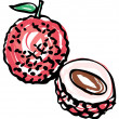 Whole and half Lychee — Stock Vector #48698069