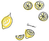 Lemon slices — Vecteur