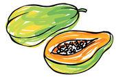 Whole and half papaya — Stock Vector