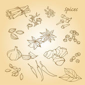 Spices icons — Stok Vektör