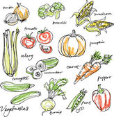 Assorted vegetables — Vector de stock