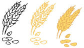 Wheat barley ears — Vettoriale Stock