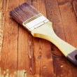 Single brush on brown wood — Stock Photo #50248161