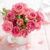 Pink roses  for celebration — Stock Photo