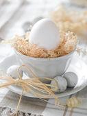 пасхальное яйцо — Стоковое фото