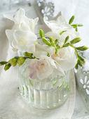 White freesia flowers — Stock Photo