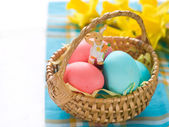 Eggs in basket with daffodil — Stock Photo
