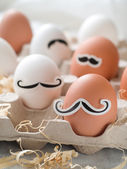 Hipster eggs — Foto Stock