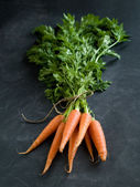 Fresh carrots — Stockfoto