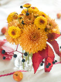 Autumn flowers — Stock Photo