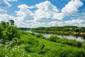 Dvina River — Stock Photo