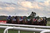 DONCASTER, ENGLAND- SEPTEMBER 11: St Leger day 5TH RACE  on SEPT — Stock Photo