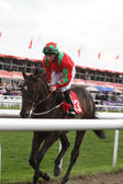 DONCASTER, ENGLAND- SEPTEMBER 11: St Leger day PAUL HANAGAN on O — Zdjęcie stockowe