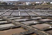 Fresh sea salt  Salinas del Carmen  Fuerteventura  — Foto Stock