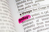 Policy  Dictionary Definition — Stockfoto