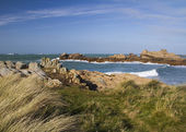 Coastal scene on guernsey, — Stock Photo