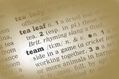 Team Dictionary Definition — Stock Photo