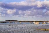 Guernsey coastline — Stock Photo