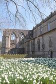 Bolton Abbey — Stock Photo