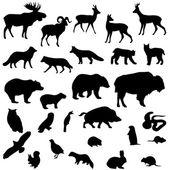 Wild animals vector set silhouettes — Stockvektor