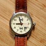 Men's wrist watch — Stock Photo #48376059