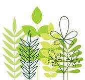 Green foliage — Stock Vector