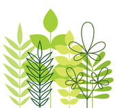Green foliage — Stock Vector