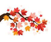 Maple tree — Stock Vector