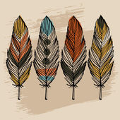 Hand draw feather set — Stock Vector