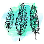 Watercolor feather set — Stock vektor
