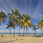 Tropical beach at Santa maria del mar, cuba — Stock Photo #48479633