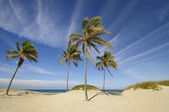 Tropical beach at Santa maria del mar, cuba — Stock Photo