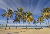 トロピカル ビーチ アット サンタ マリア デル マー, キューバ — ストック写真