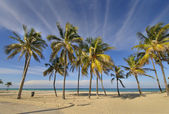 Tropisch strand in santa maria del mar, cuba — Stockfoto