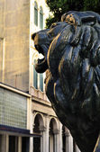 Detail of Prado Lion in havana — Stock Photo