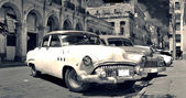 Old Havana cars panorama b&w — Stock Photo