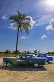 Tropical oldtimer — Stock Photo