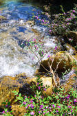 Water flowing between rocks — Stock Photo