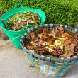 A basket of leaves — Stock Photo #49512053