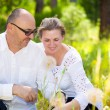 Happy mature couple enjoying weekend day in a park — Stock Photo #51146281
