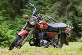 Old bike in the woods — Stock Photo