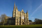 Salisbury cathedral — Foto Stock