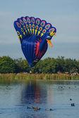 Balloons over Waikato — Stock Photo