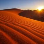 Sand dunes of Erg Chebbi — Stock Photo #48998597